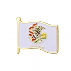 Illinos State Flag Pins