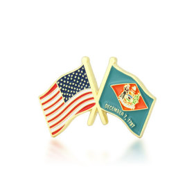 Delaware and USA Crossed Flag Pins